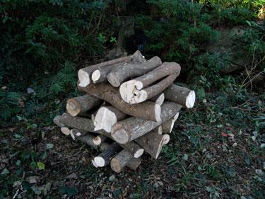 しいたけほだ木組み