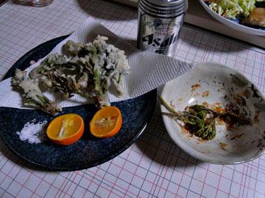ワラビとタラノメの山菜天ぷら