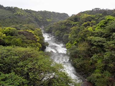 春の雨による増水した川