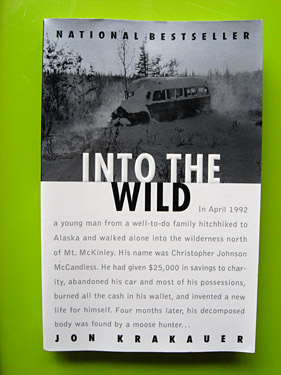 Into The Wild のペーパーバック版の写真