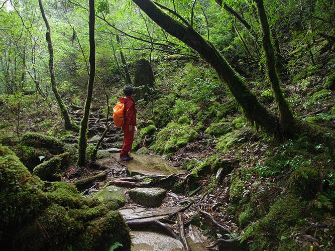 天文の森ツアー 2015.11.13