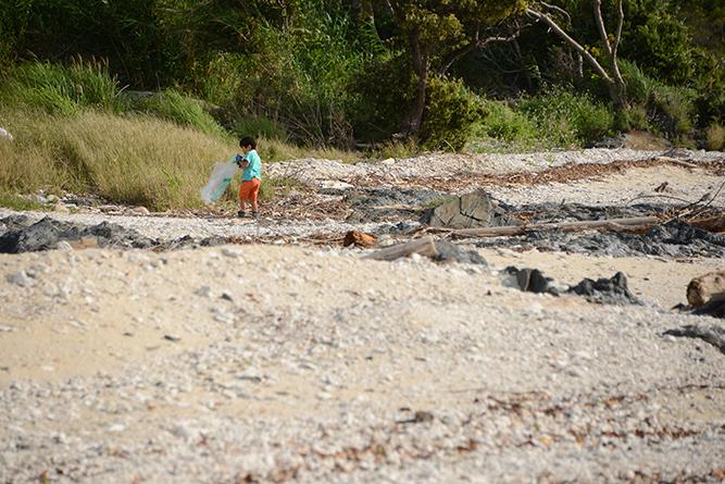 海岸清掃 2016 1