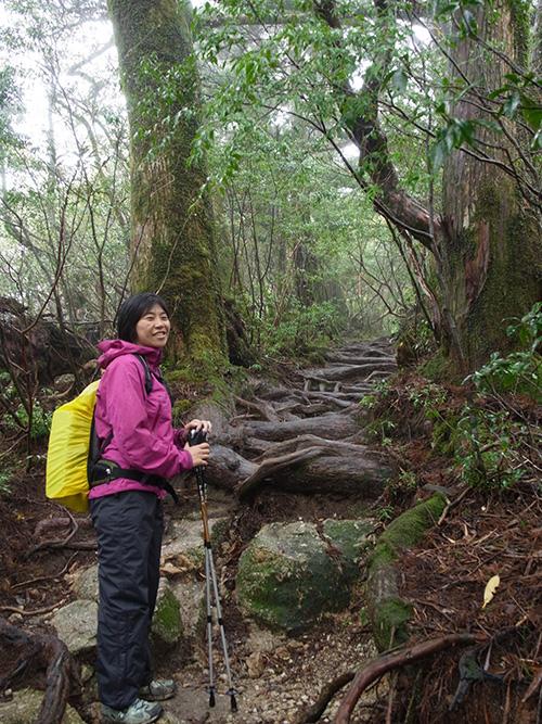 リピーターTさんと一緒に根っこロードと化した登山道を見る