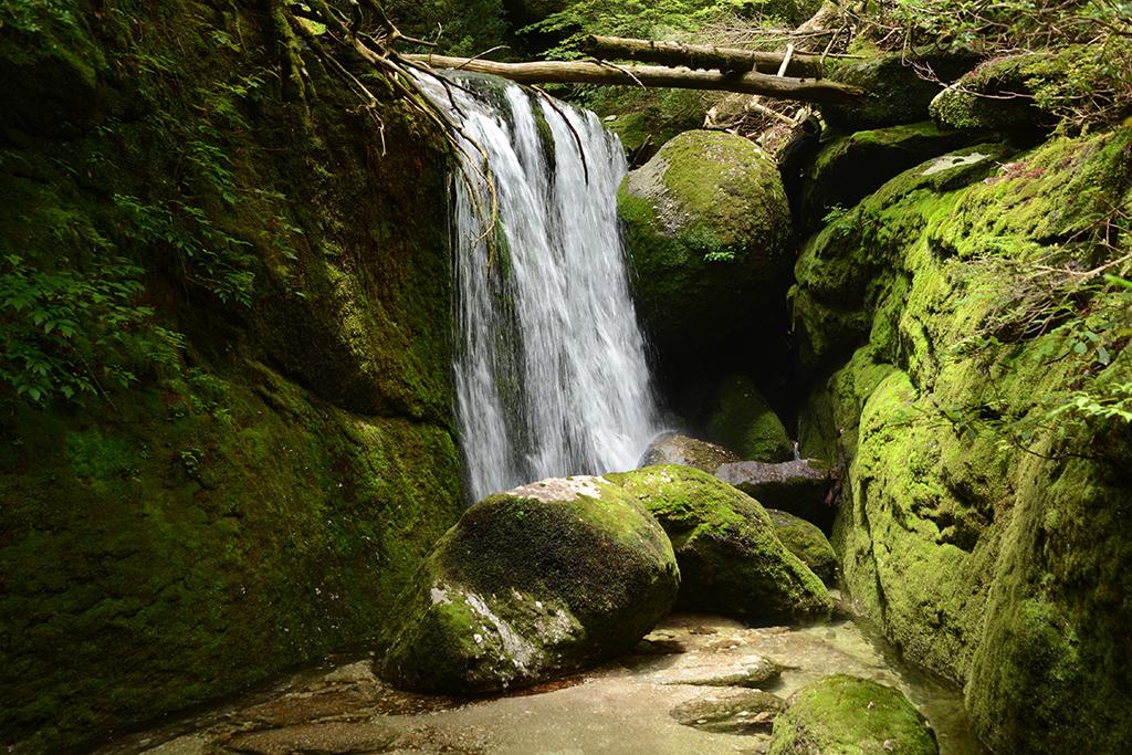 後半に行くほど、水量は減り、岩場を上る場面が増えて来ます。