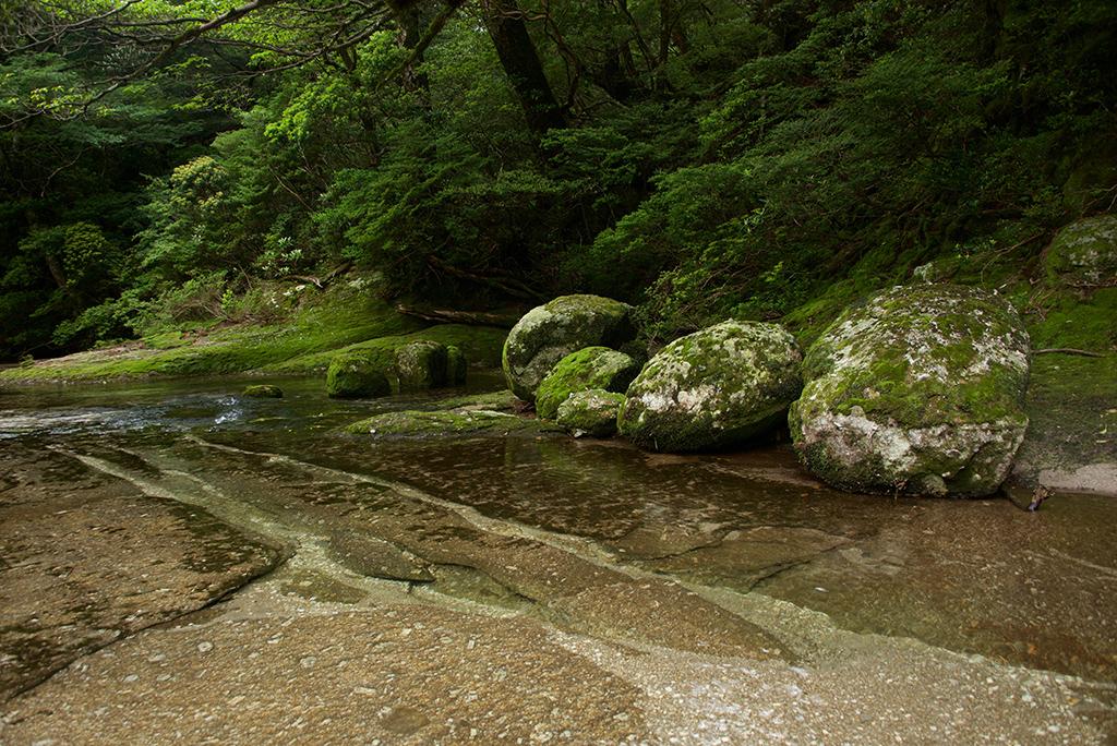 玉岩がまとまって脇に並んでいる姿に魅せられ…