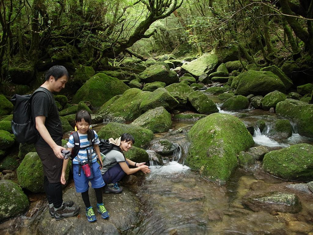 家族で白谷雲水峡の清流を満喫