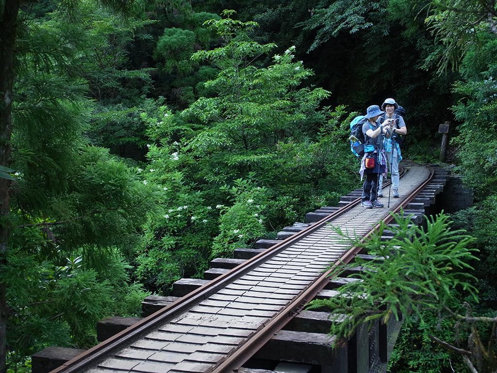 橋の上から川の景色を望む。さぁ、縄文杉へ向けて出発だぁ〜!
