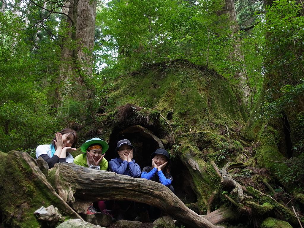 屋久島の縄文杉コースにあるウィルソン株の前に横たわる倒木を利用し、頬杖をついてポーズを取る参加者4人の写真