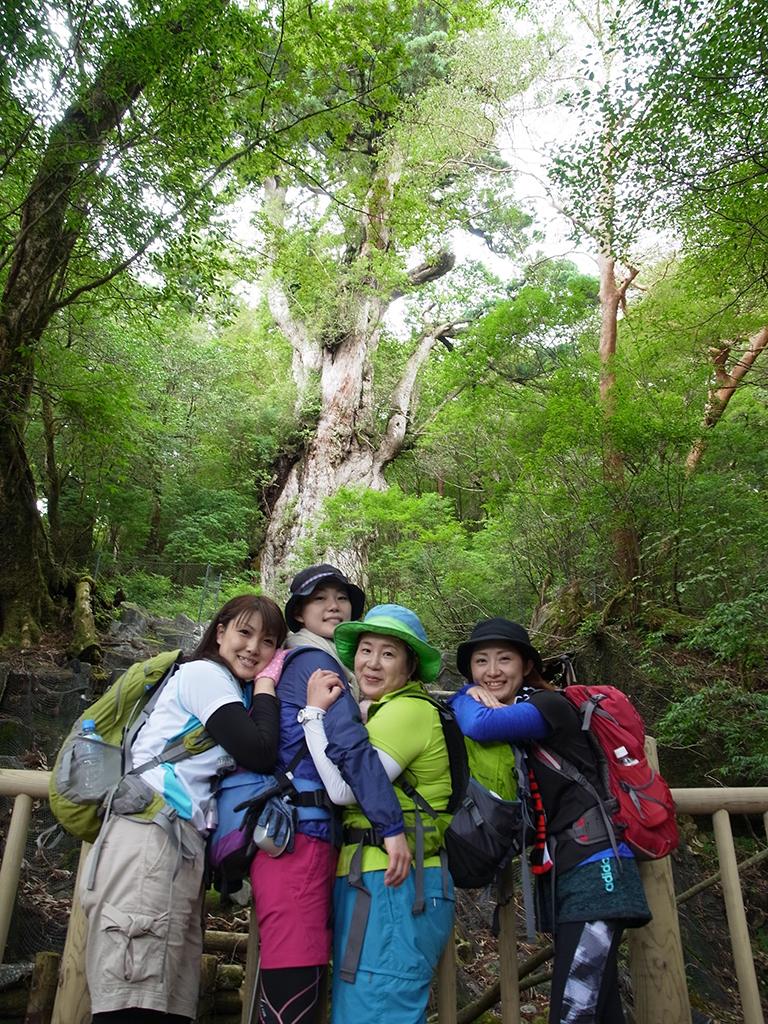 念願の縄文杉に出会えた4人が、縄文杉をバックにお互いに抱き合って到着記念撮影