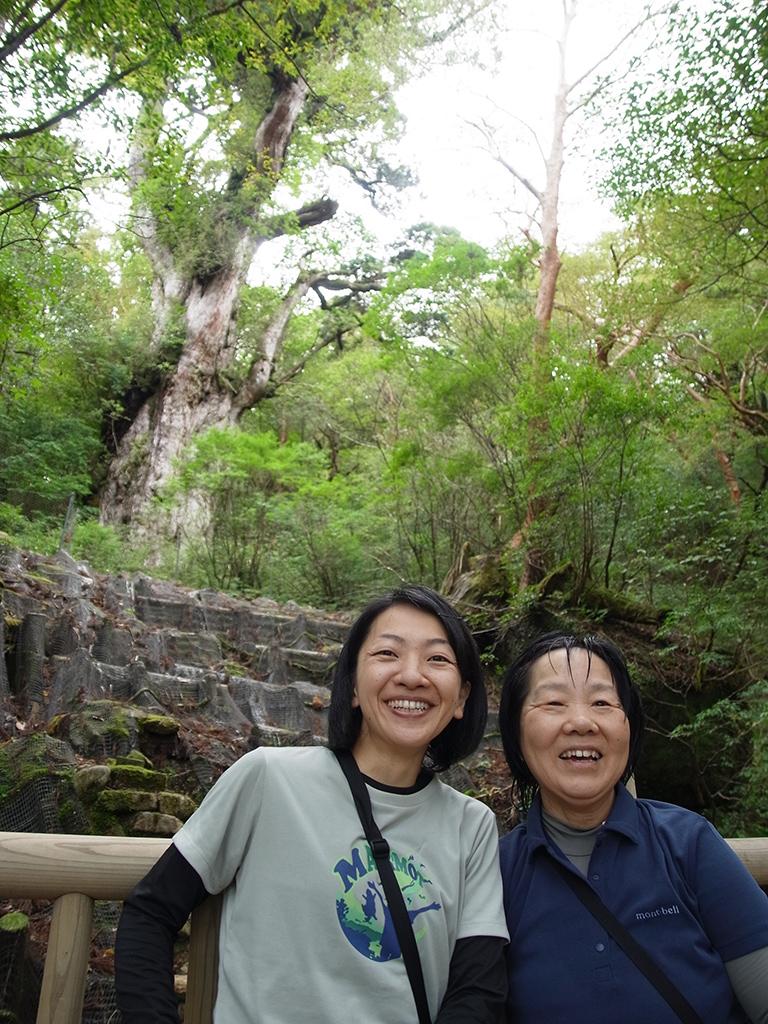 10年ぶりとなる縄文杉との再開を果たした二人の笑顔と縄文杉の写真