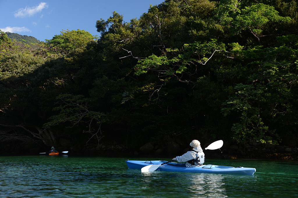 エメラルドグリーンに輝く栗生川の水面を漕ぎ進めるA君とEさんの写真