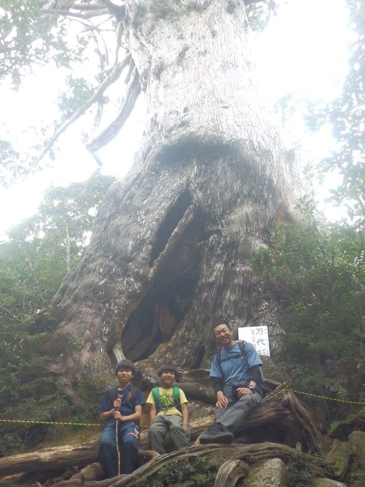 万代杉の前で3人揃っての家族写真を偶然逢った友達の奈央ちゃんに撮ってもらった一枚