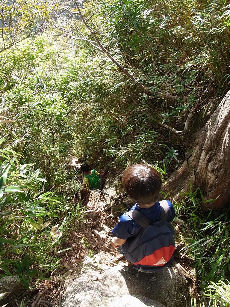 急坂を下りる次男を上で待つ長男の写真