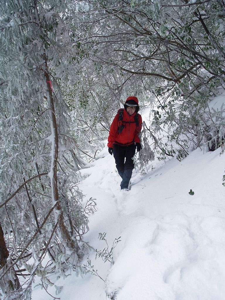 真っ白になった雪景色の中を、気持ち良さそうに歩いてくる参加者の写真