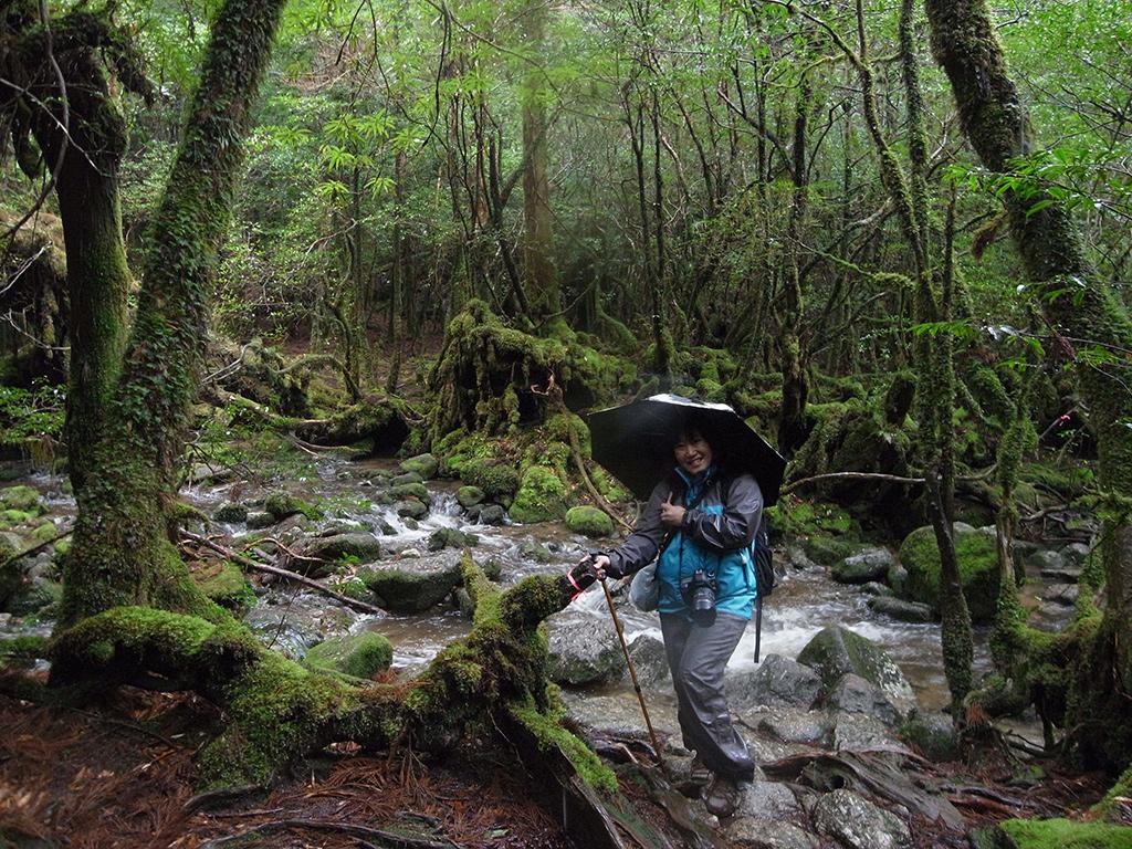 苔むす森を見た後に立ち寄った別の美しいスポットで撮った清流と苔の横に立つ参加者の写真