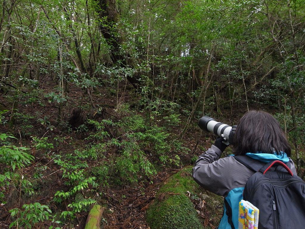 シカ写真家の石井さんと歩いた2日間