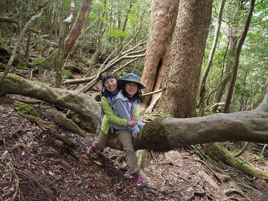 座りやすく横に伸びる太い木にまたがり、満面の笑みを浮かべるSちゃんとFちゃんの写真