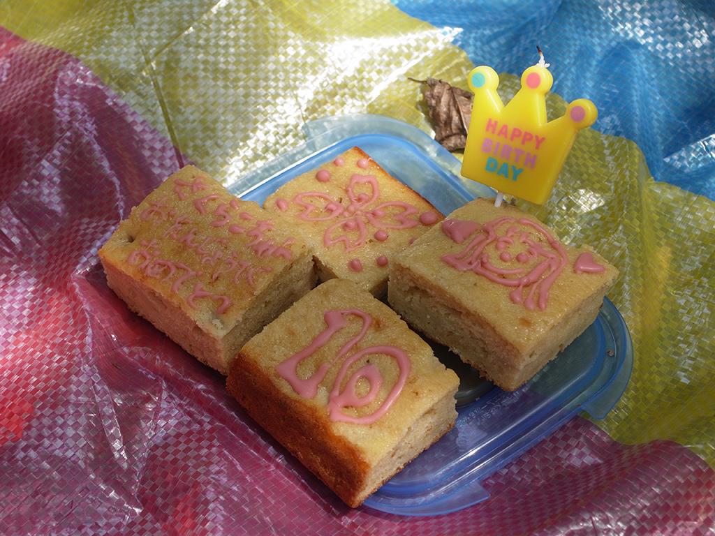 「自然のポケット」におけるキッチン部門の責任者である我が奥様による手作りケーキのアップ画像