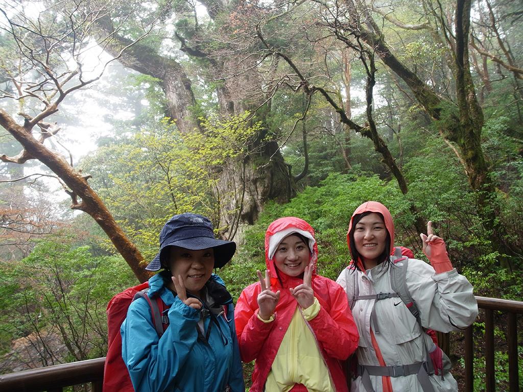 縄文杉が一番太く見えるこの角度で3人の笑顔いっぱいの記念写真