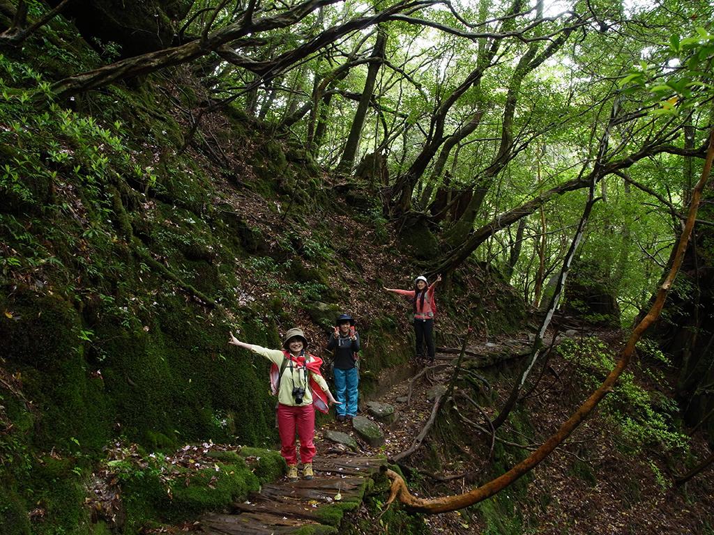 白谷雲水峡らしい小路が森の中を伸びる中、みんなで手を大きく広げてポースをとる3人の写真