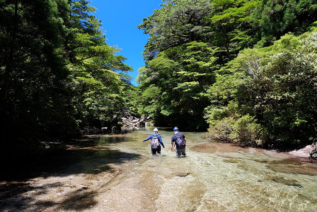 大人の水遊びシリーズ第二弾。屋久島の究極に美しい沢を堪能するツアーに参加したT夫妻がもの凄く美しい沢を歩いて行く写真