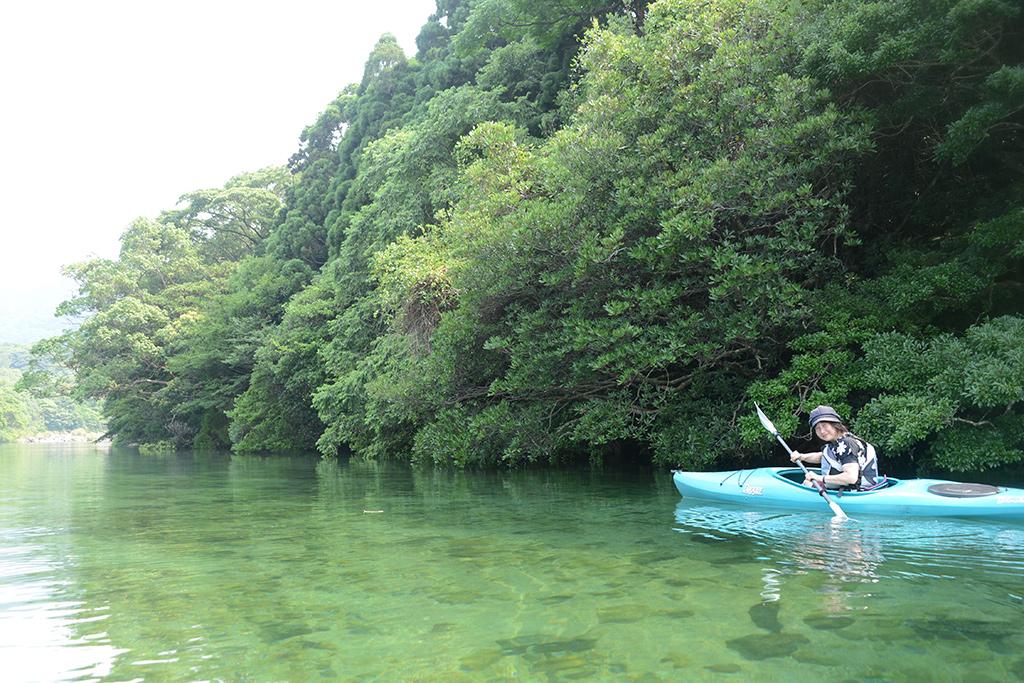 川の透明度に驚きながらカヤックを漕ぎ進むKさんのニッコリ微笑み風景写真