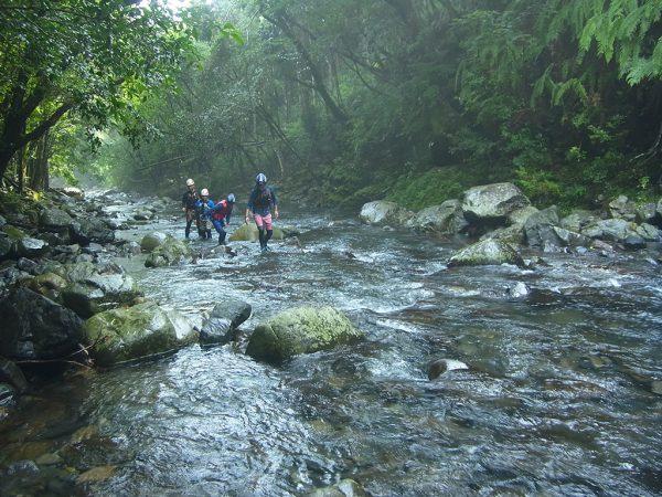 沢登りで川を遡上し始めた4人の姿を遠景から撮った写真