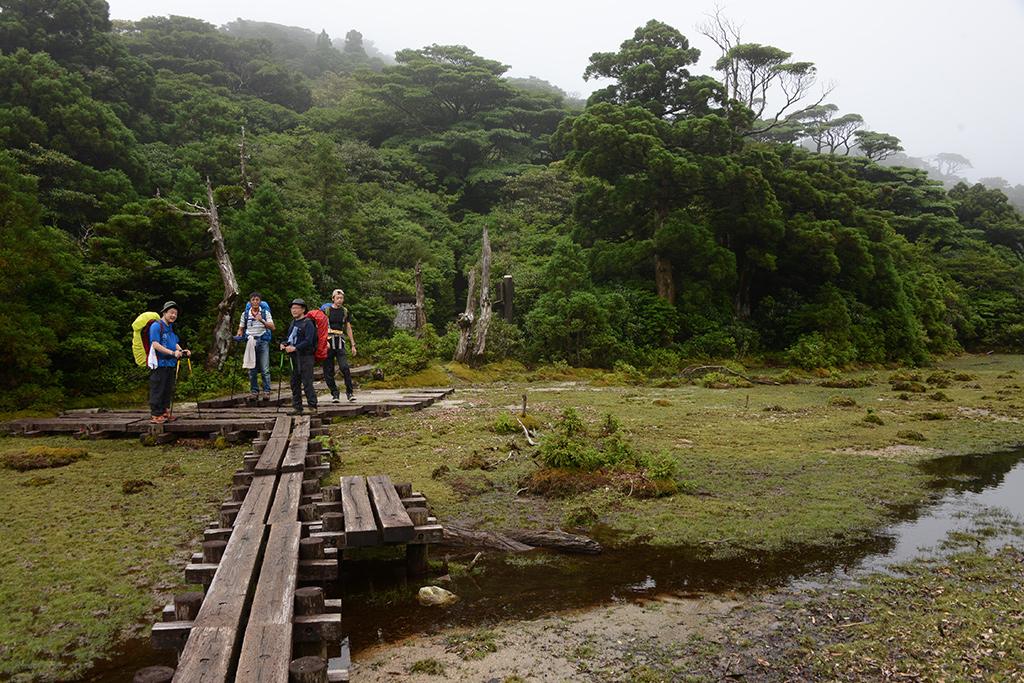 突然目の前に現れた湿原・小花之江河にみんなが出揃った所で撮った写真