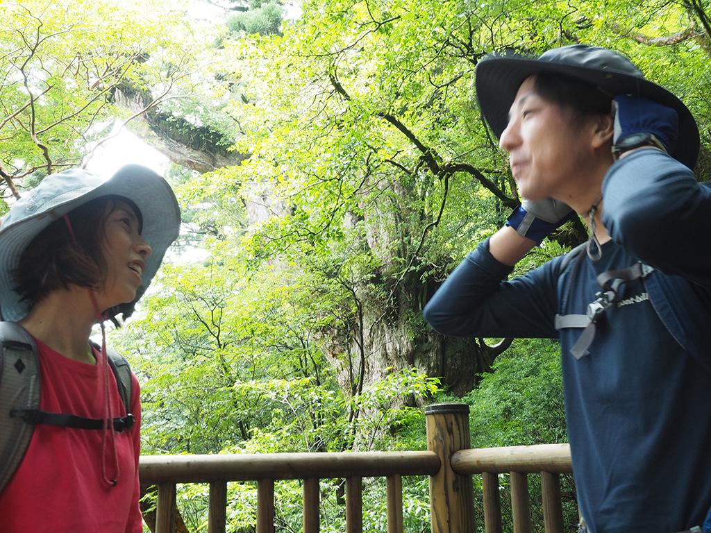 縄文杉の前で2人の自然体を撮った写真(その1)