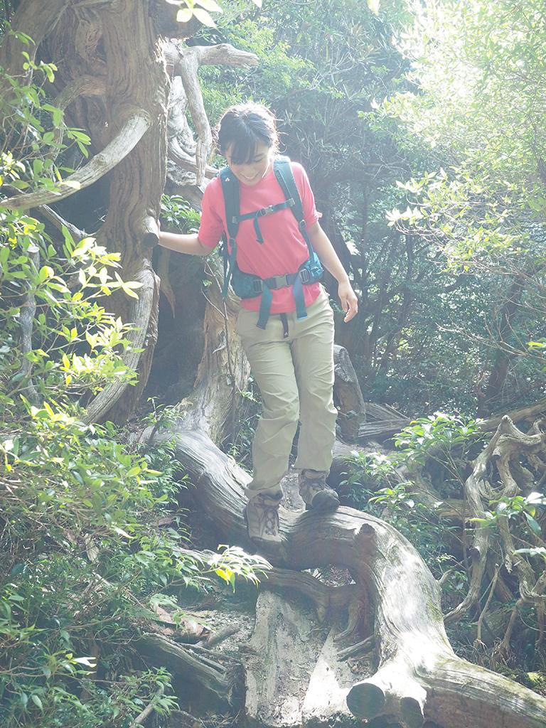倒木がある事で生まれた陽だまりエリアで、笑顔で倒木の上を歩く参加者Nさんさの写真