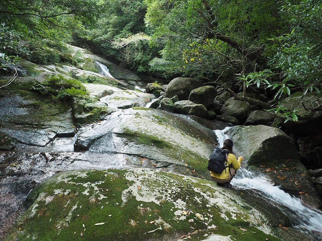 ナメ滝の途中で清流を眺める参加者の写真
