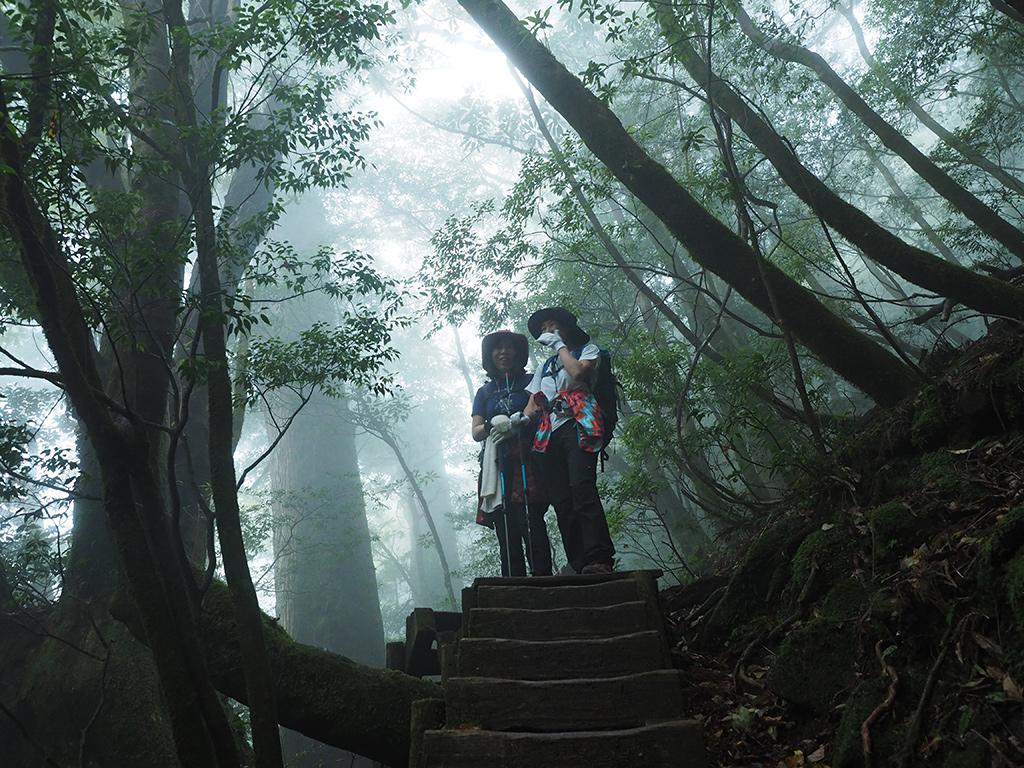 森が立ちこめる雲で神秘的に霞んだ風景をバックに撮った二人の写真
