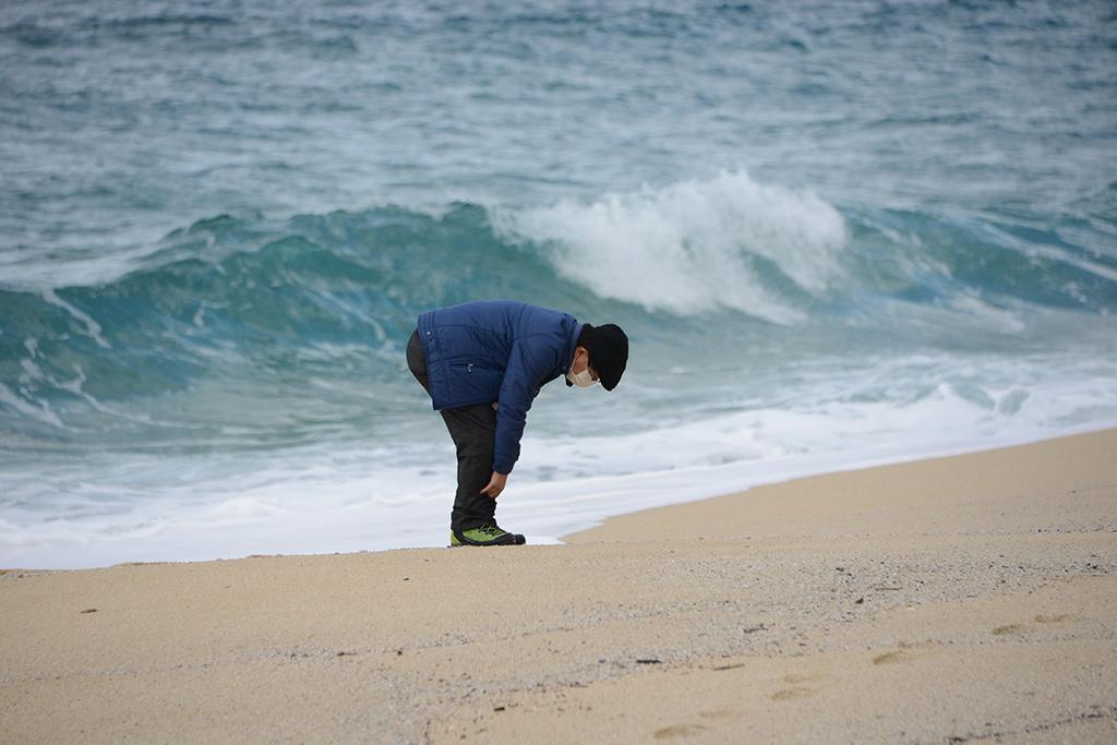 貝拾いが大好きなMさんが、いなか浜の綺麗な砂浜で貝を拾っている写真