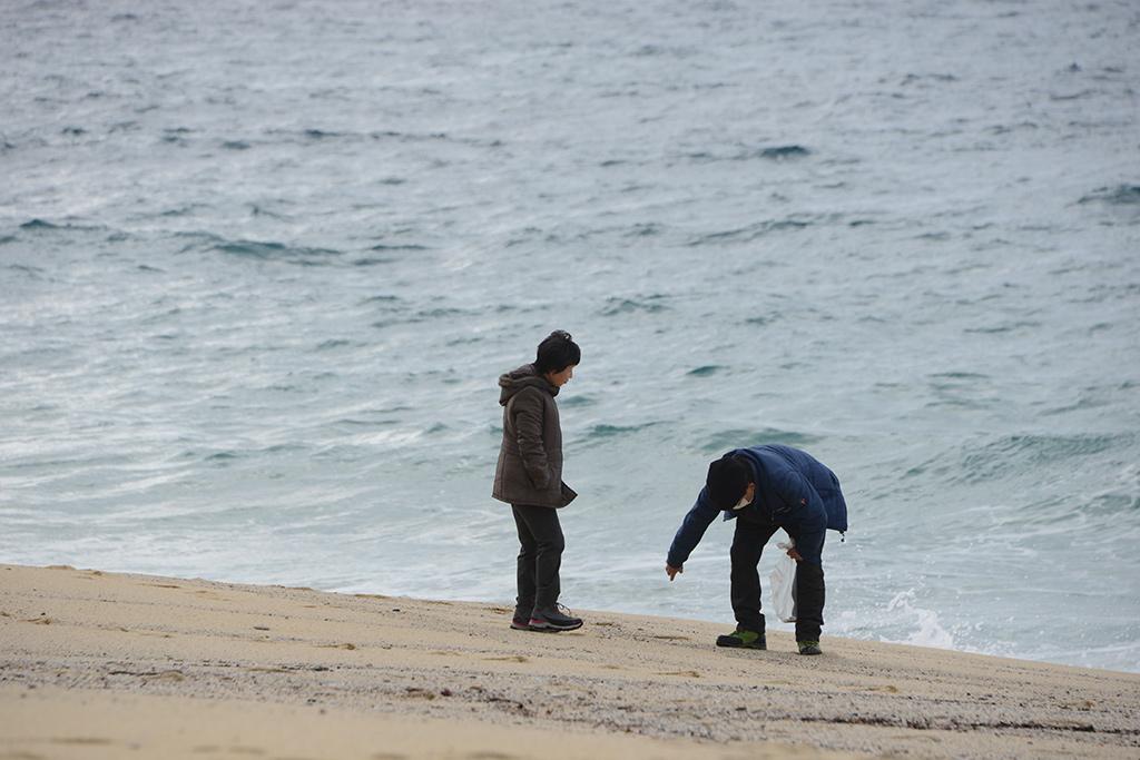 ご夫婦揃って貝殻を拾っている姿を微笑ましく見ながら納めた写真