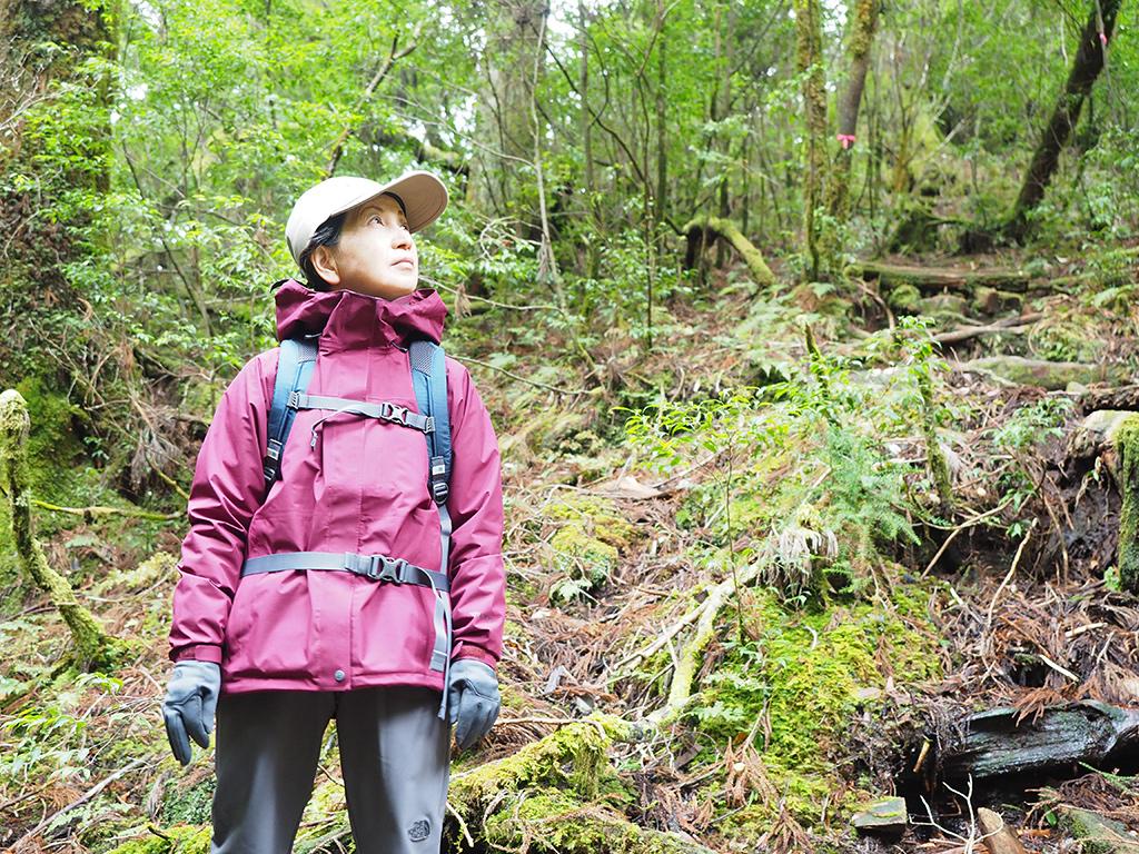 奥さんのKさんが釈迦杉を見上げている時にこっそりと撮ったベスト写真