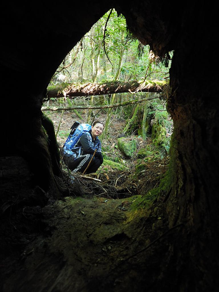 撮る側の私が巨大な倒木の中に入って、外からこちらを覗く参加者Aさんを捉えた写真