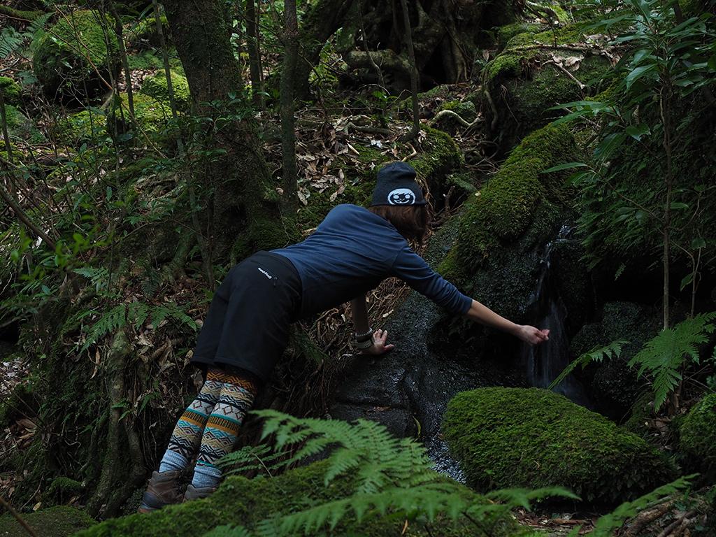 苔むした岩の間を流れる水を汲む参加者の写真