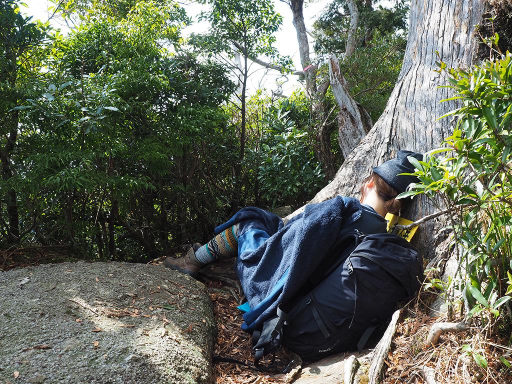 木に寄り添いお昼寝する参加者の写真