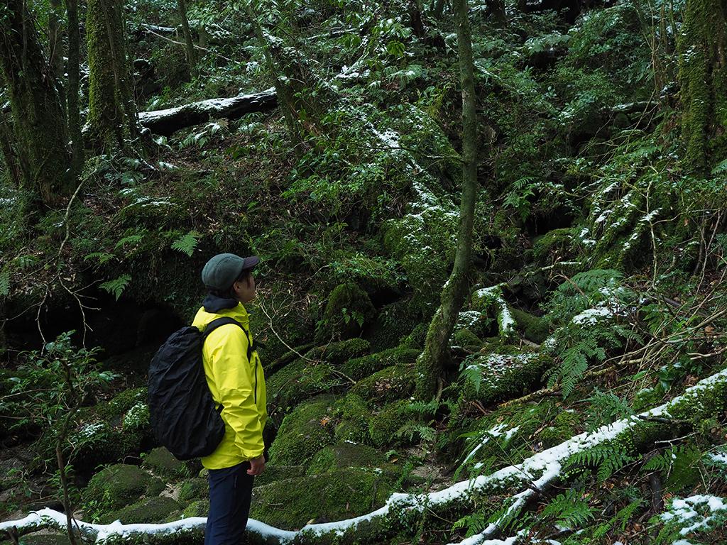 標高800付近の森は大分雪が目立ち始め、その光景を眺める参加者Kさんの写真