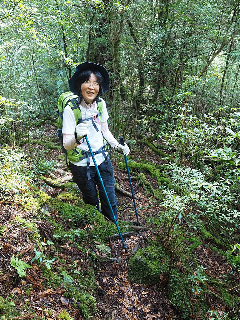 登山道にまで苔がびっしりとなる様に喜ぶ参加者の写真