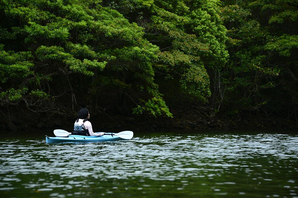 春の濃い緑と川の緑に包まれる参加者のカヤック写真