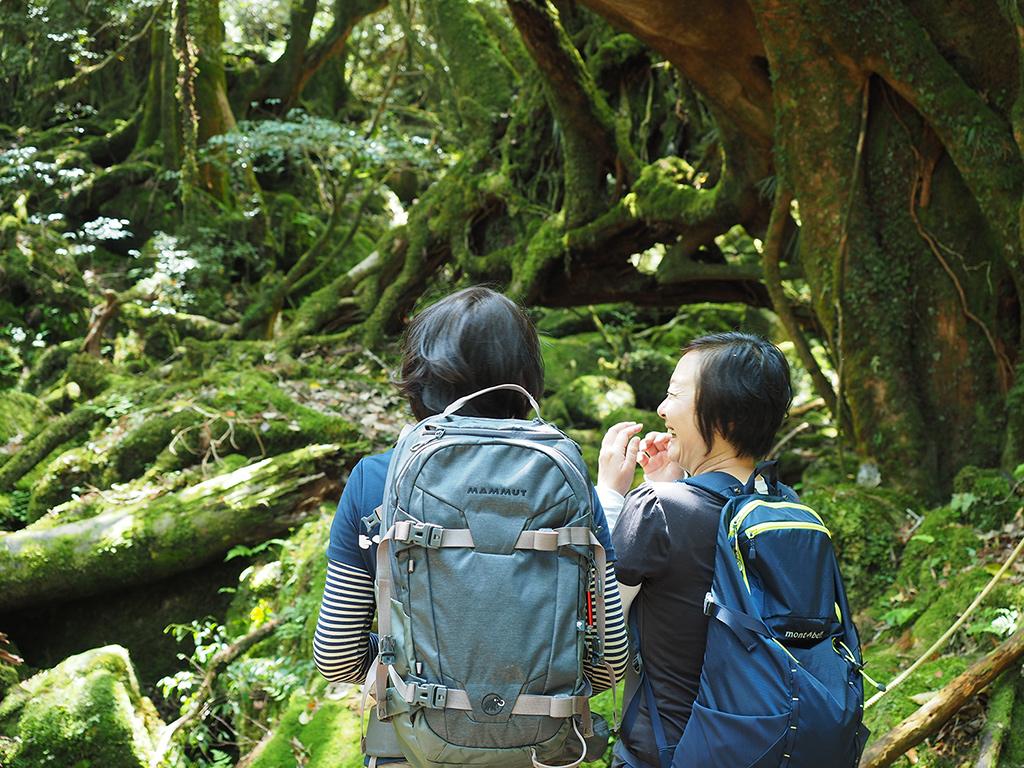 かつてもののけの森と呼ばれたこの場所で風景を眺めながら談笑する二人の写真