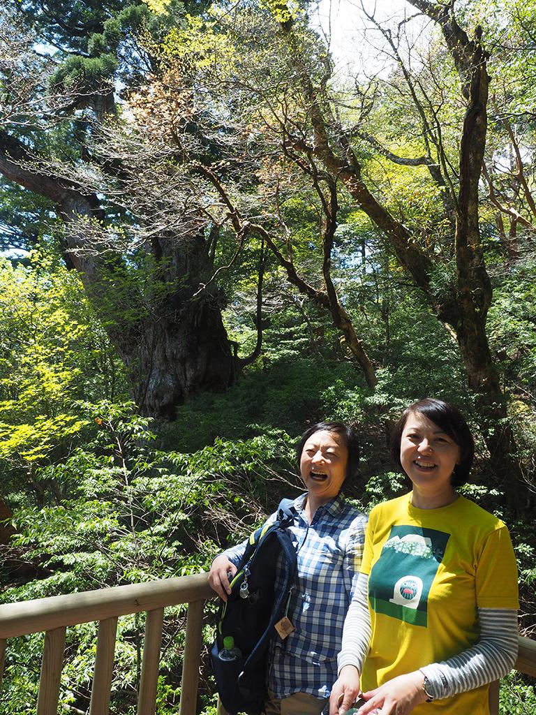 遂に縄文杉と対面したお二人の写真