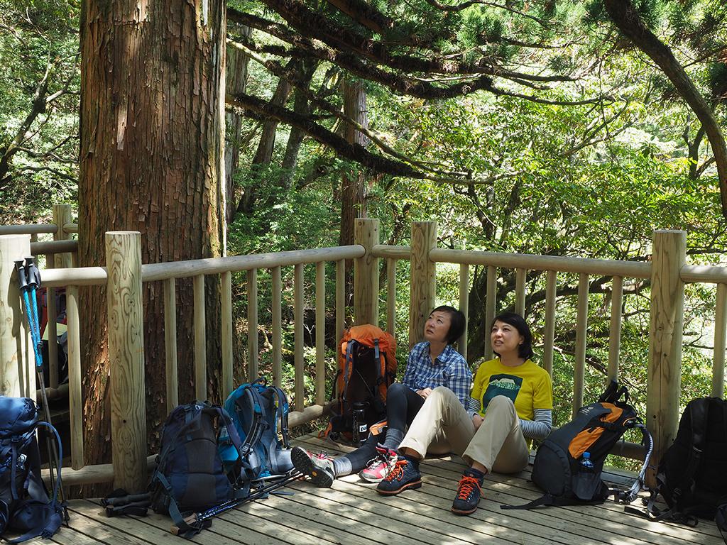 GWなのに何故かデッキにほとんど人が居なくて、縄文杉を座りながら見ている二人の写真
