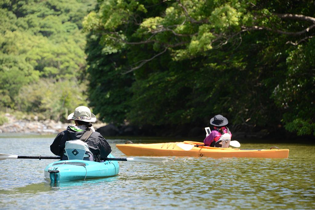 彩りの綺麗な川の色と岸の木々の緑に映える二人のカヤック姿写真