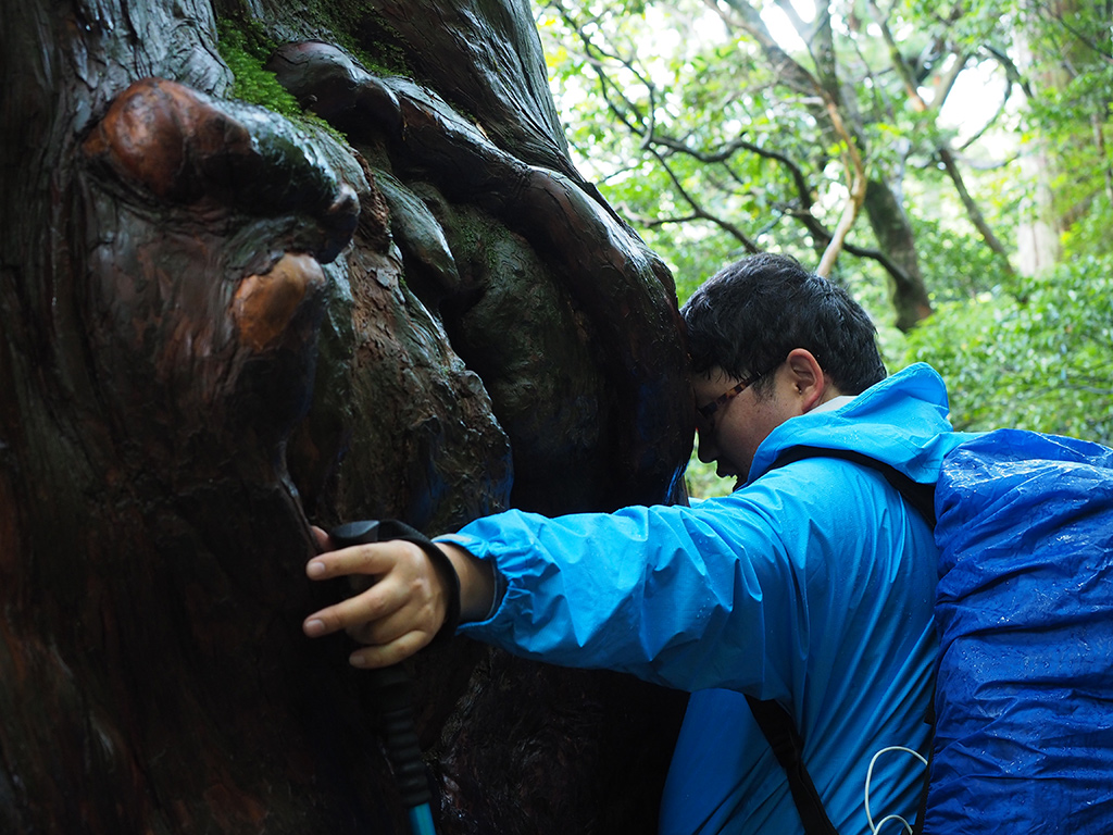 巨木が雨に濡れて黒く光り、その濡れた樹皮におでこを当ててひんやりとしながら抱きかかえるF氏の写真