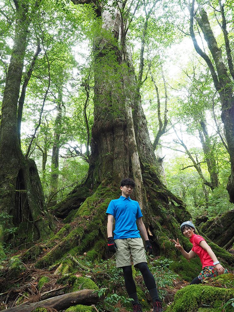 三穂野杉の前に立つ二人の写真