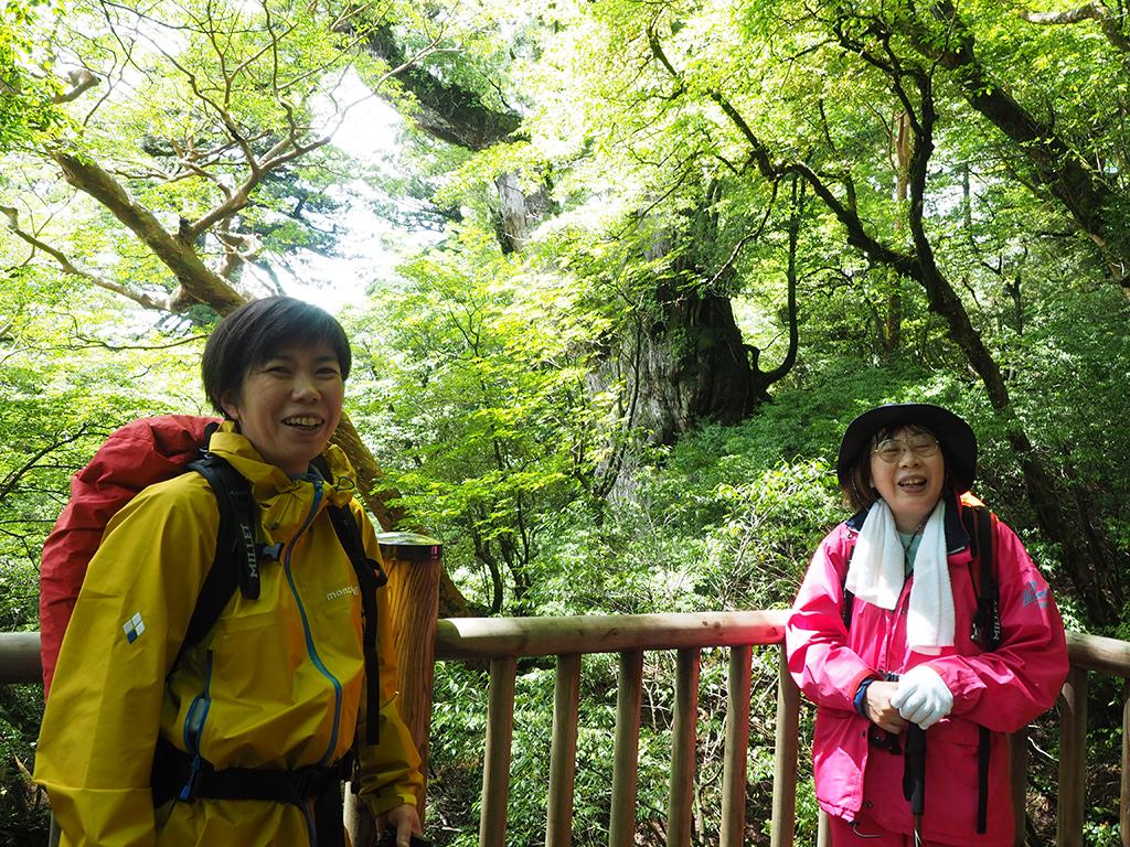 陽光に輝く縄文杉を負けない程の笑顔の輝きで喜ぶ二人の写真