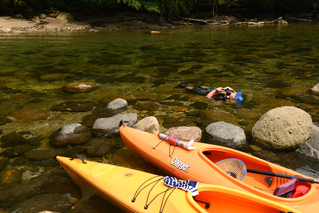 Tさんの十八番である、水中でのお昼寝をしている写真(笑)