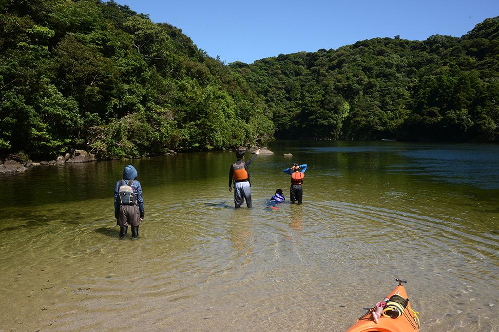 家族4人で川に入り、美しい川の景色を眺めている後ろ姿写真